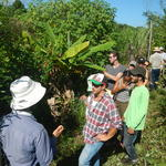 20150401 Fazenda Aula International Agriculture ADAGH 005.jpg
